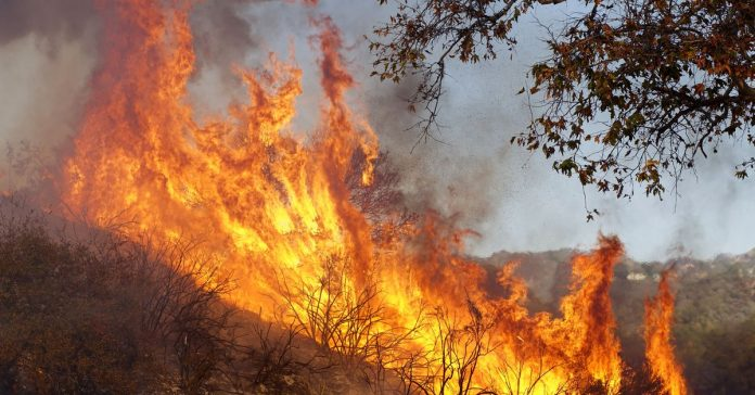 """California's wildfires are hardly """"natural"""" — humans made them worse at every step"""