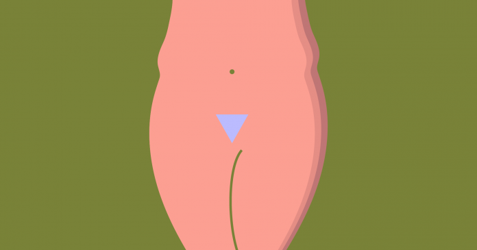 A Comprehensive Guide To Growing Out Your Pubic Hair
