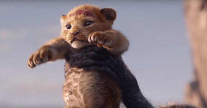 The live-action Lion King trailer is here. Happy Thanksgiving!