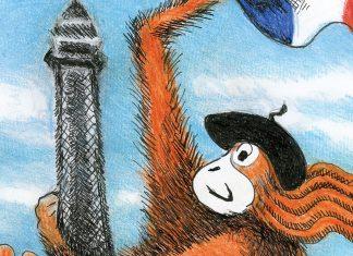 GingerNutz: The Orangutan Fashion Icon Inspired By Grace Coddington