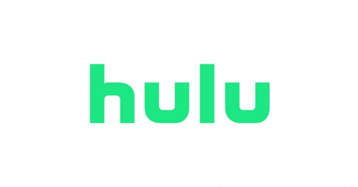 Hulu Vs. Netflix: One Taught Me Love, One Taught Me Patience