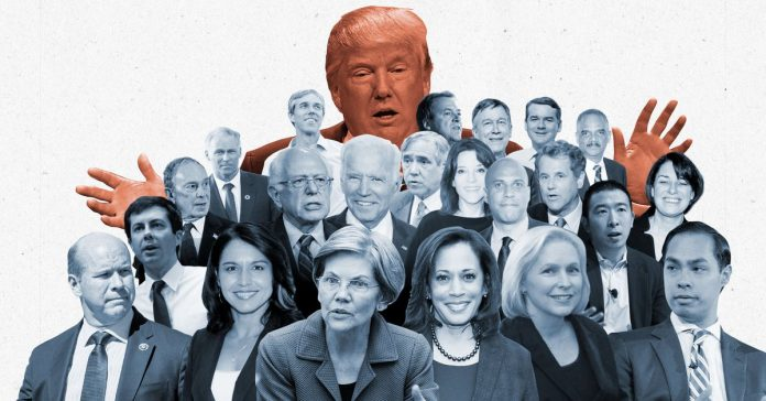 Vox's guide to the 2020 presidential candidates