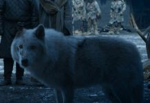 Why Game of Thrones fans are outraged over the show's treatment of Ghost