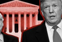 How Trump took over America's courts
