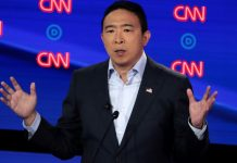 Andrew Yang is out to save the American mall