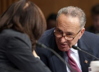 Chuck Schumer wants Trump to redirect border wall money to gun control initiatives