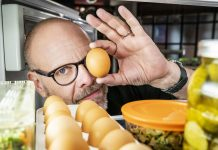 Bristling with nerdy energy, Alton Brown's Good Eats is back — and not a moment too soon