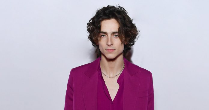 Timothée Chalamet Wore Womenswear On The Little Women Press Tour & No One Noticed