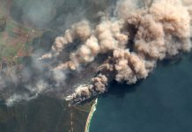 Australia's massive fires, as seen from space