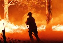 Can the fire catastrophe make Australia's government finally act on climate change?