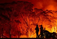 8 things everyone should know about Australia's wildfire disaster