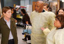 Grey's Anatomy Season 16 Mid-Season Premiere Recap: Why Are People Stealing Babies?