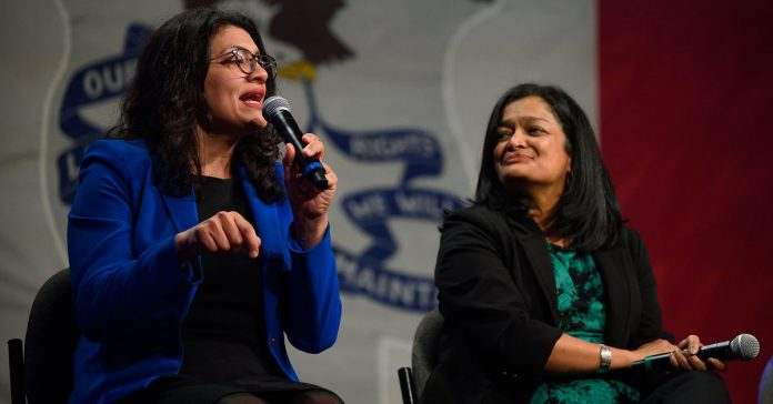 Tlaib promises to help preserve party unity after wading into a Clinton-Sanders row