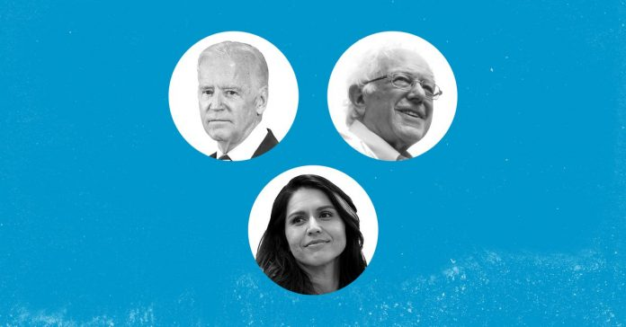 The 3 Democrats running for president and everything else you should know about 2020