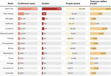 Chart: The coronavirus pandemic, state by state