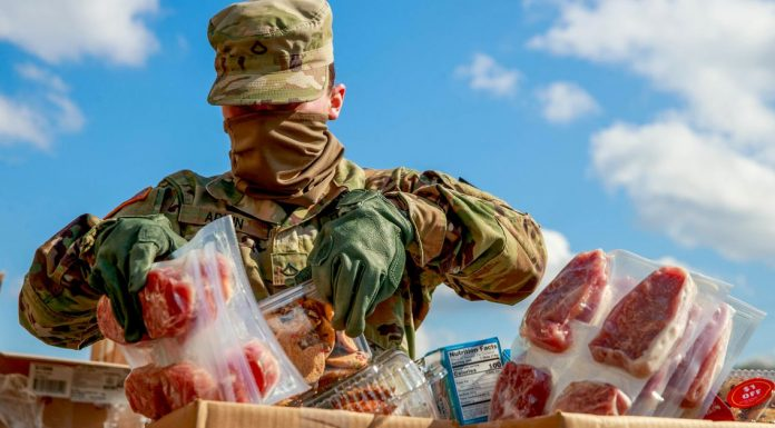 The moral cost of America's meat-supply obsession