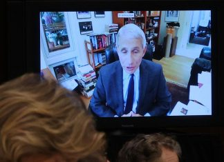 Fauci's Senate testimony debunked a number of Trump's favorite coronavirus lies