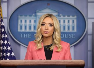 It's A Good Thing We Have Kayleigh McEnany To Stand Up For Paw Patrol