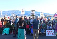 The pandemic hasn't stopped Native Hawaiians' fight to protect Maunakea