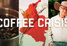 The global coffee crisis is coming