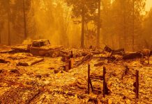California's recurring wildfire problem, explained