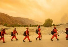 A new California law will help inmate firefighters join fire departments upon release