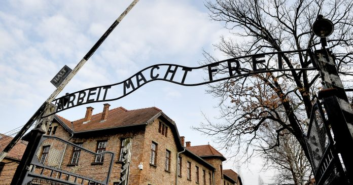 A New Survey Shows That Over 1 In 10 Young Americans Have Never Heard Of The Holocaust