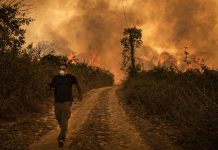 What wildfires in Brazil, Siberia, and the US West have in common