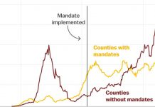 Why every state should adopt a mask mandate, in 4 charts