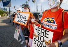 A federal court just reinstated DACA, and the implications go far beyond immigration