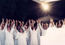 9 wild cult stories for you to get lost in