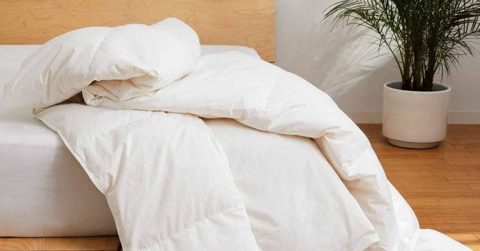 Out Of Hundreds Of Fluffy Comforters, These Are The 12 Worth Investing In